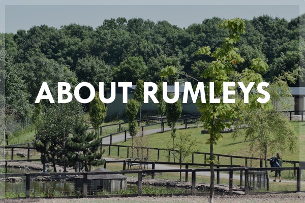 ABOUT Rumleys