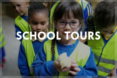 Rumleys School Tours